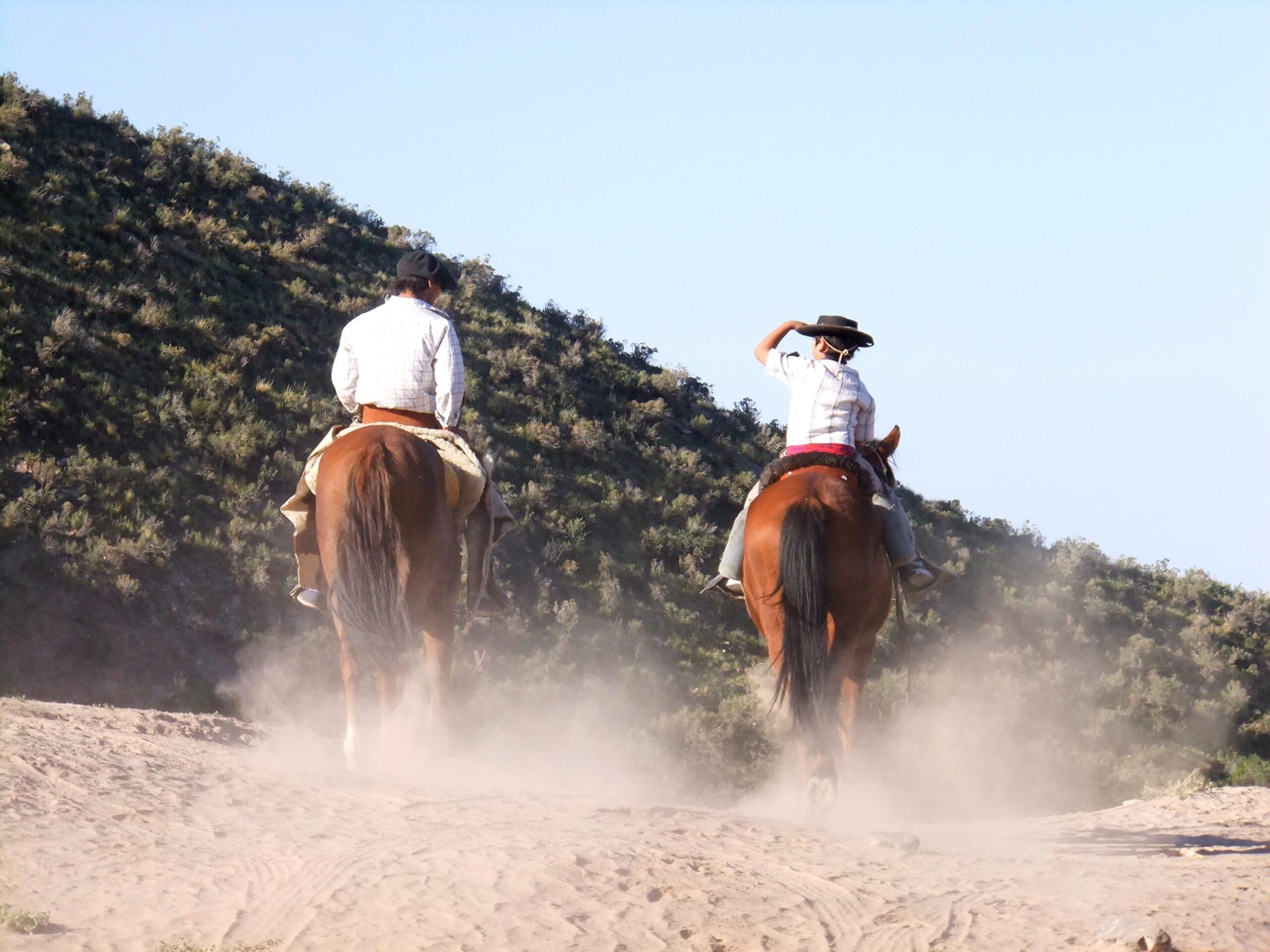 the-argentine-cowboy
